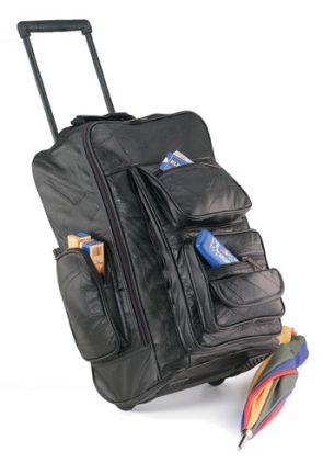 carry-on_bags-1