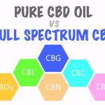 Pure CBD Oil Vs. Full-Spectrum PhytoCannabinoid-Rich Water-Soluble CBD