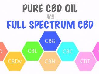 Pure CBD Oil VS Full Spectrum CBD