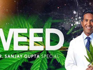 Dr Sanjay Gupta - CBD Weed